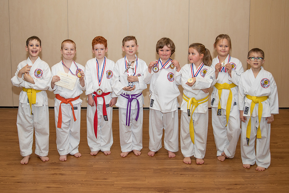 Ware karate competition medals showing